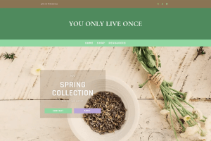 You Only Live Once website screenshot