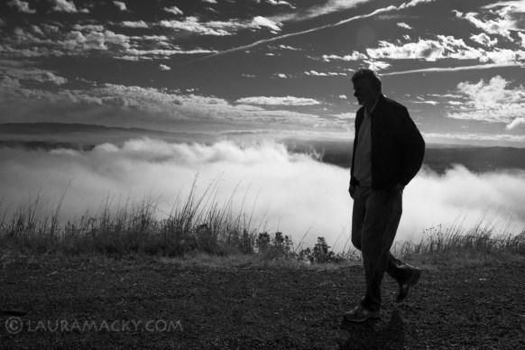A Walk in the Fog