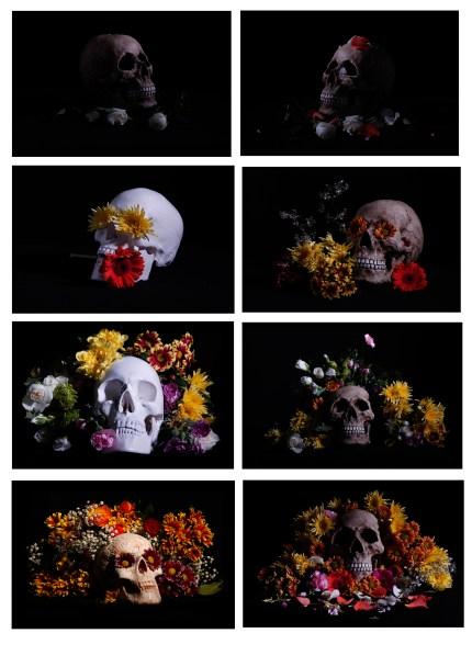 final series of photos