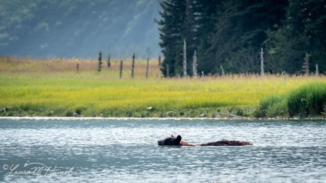 Alaska2019-62.jpg
