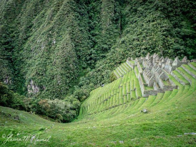 Peru201819-155.jpg