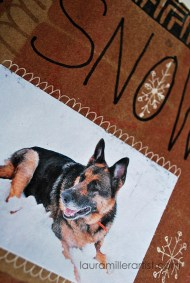 14pet art journal