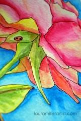 3 rose is a rose