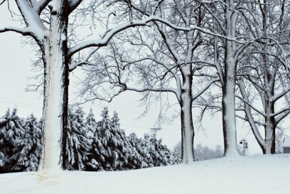 winter-embrace-day-after-the-snow-laura-miller3-2