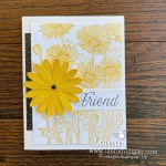Daisy Garden and Daisy Lane handmade cards by Laura Milligan Stampin