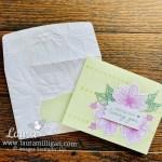 Ways to Dress Up Your Envelope - Laura Milligan, Demonstrator Stampin