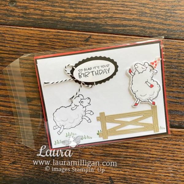 six ways to dress up your envelopes - clear envelope by Laura Milligan Stampin' Up! demonstrator Earn FREE BEES