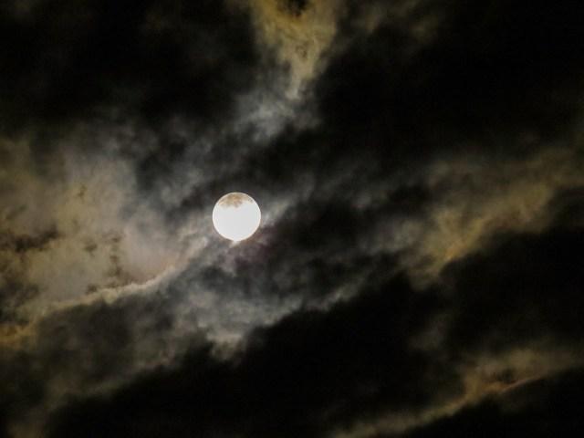 moon-973099_1280