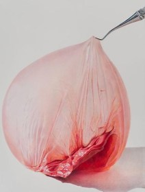 Pulled Peach, 2013, colored pencil on paper, 16 x 12 inches