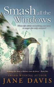review of smash all the windows by jane davis