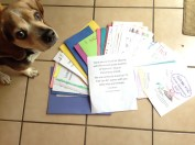 Capt. Jack Sparrow stands guard over a rainbow of thank yous!