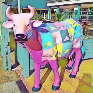Pink Cow [15 Words or Less]