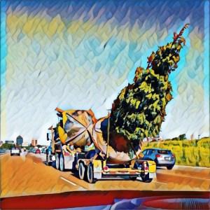 Freeway Treeway [15 Words or Less]