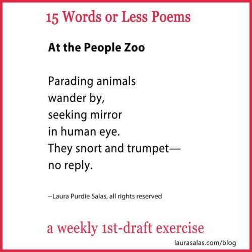 At the People Zoo, a 15 Words or Less poem by Laura Purdie Salas