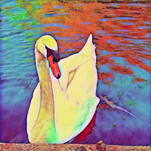 Swan [15 Words or Less]