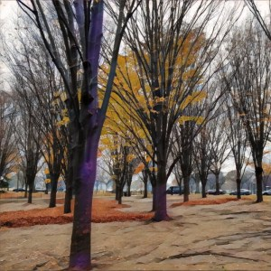 DC Trees [15 Words or Less]