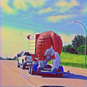 Cow on a Flatbed? [15 Words or Less]