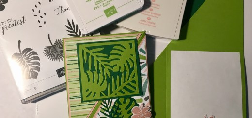 Tropical Chic Fun Fold Cards showing front and inside