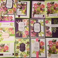 Paper Pumpkin August 2018 Alternatives: 15 Blissful Blooms from One Kit!