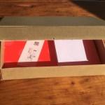 empty inside-out paper pumpkin box 2