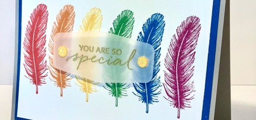 Rainbow feather card open tasteful touches stamp set