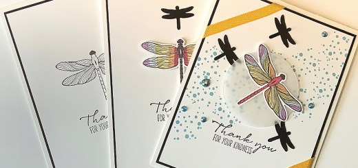 beginner casual avid crafter dragonfly cards Stampin up stamping dragonfly garden
