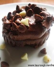 Gluten Free Fudgy Flourless Chocolate Muffins