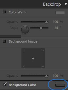 Slideshow Background Color Color Swatch