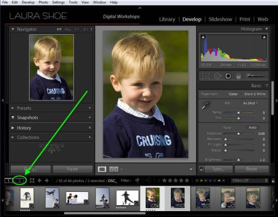 Lightroom secondary screen button