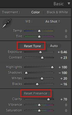 lightroom reset tone and presence buttons with alt/opt key
