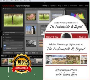 Lightroom Fundamentals & Beyond Training Video Tutorials