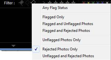 Lightroom Change Flag Filters or Turn Off
