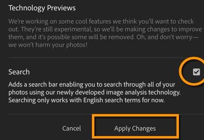 Lightroom Web: Activate Search