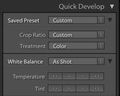 Lightroom Quick Develop Panel
