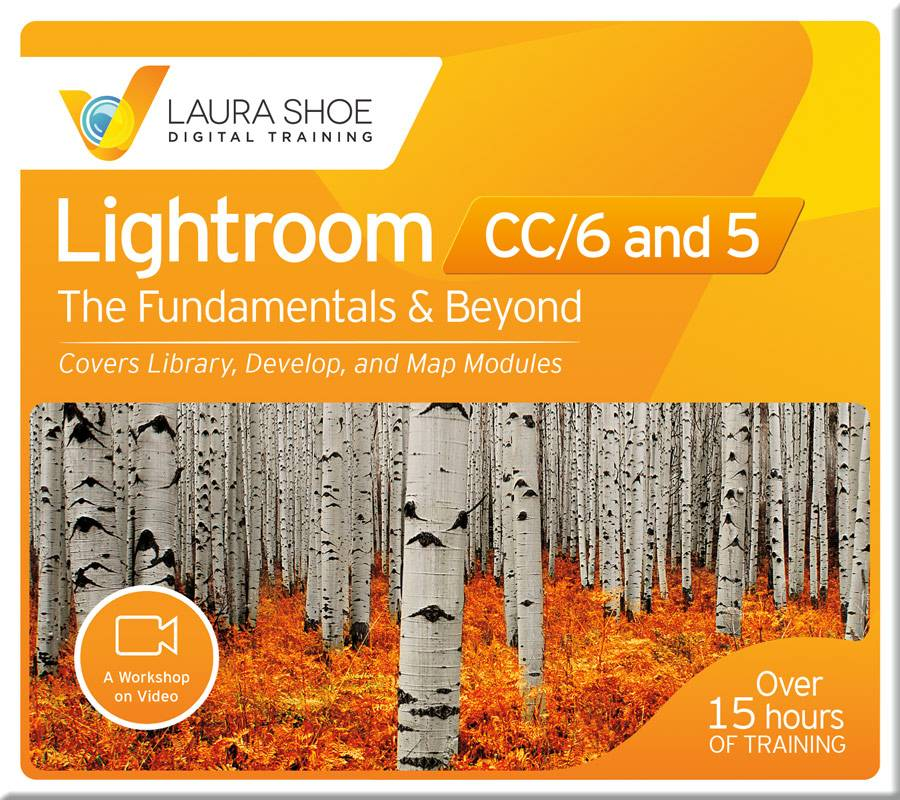 Lightroom CC/6 and 5: The Fundamentals & Beyond - Video Training