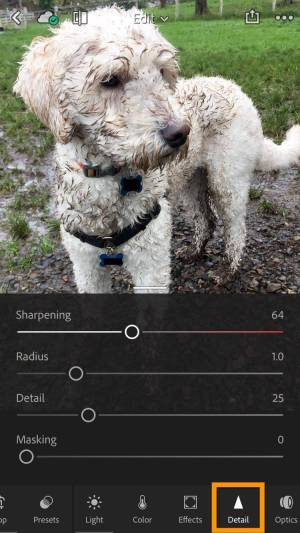 Lightroom mobile sharpening and noise reduction
