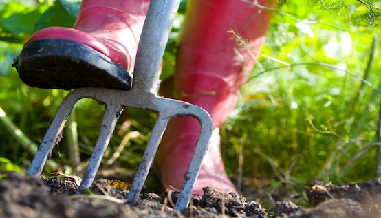 Forking For Spring Gardening