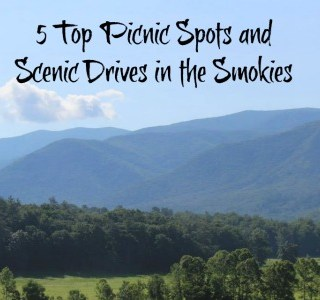 5 Top Picnic and Scenic Spots in the Smokies