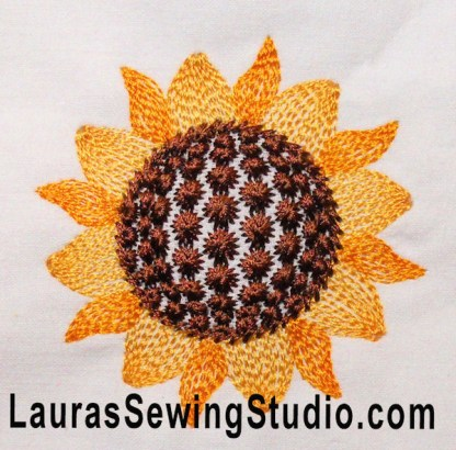 Sunflower Harvest Flower Head