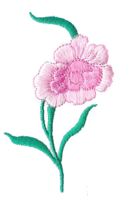 Carnations - No. 1