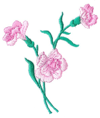 Carnations - No. 3