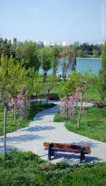 View From The Rose Isle in Titan Park, Bucharest, Romania