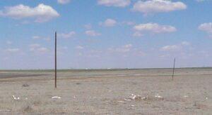 Cow skeleton, Texas. To be fair, we are 1/4 mile off 66 here, having missed a turn.