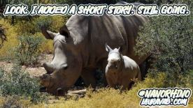 Mother and baby rhino: I added a short story, but still going.