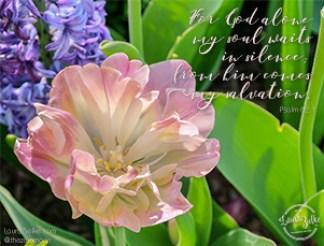 Psalm 62:1