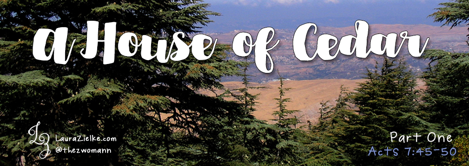 A House of Cedar (part one)