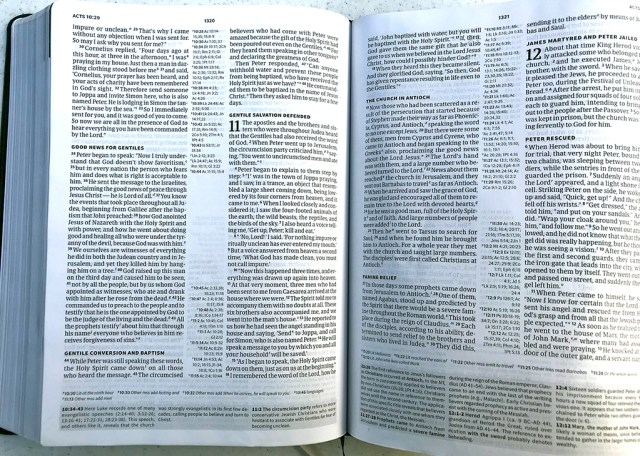 Worldview Study Bible