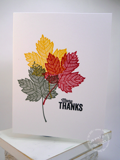 Fall Leaves Many Thanks Card