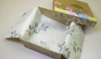 The CASED Box