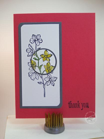 Thank-You-Spotlight